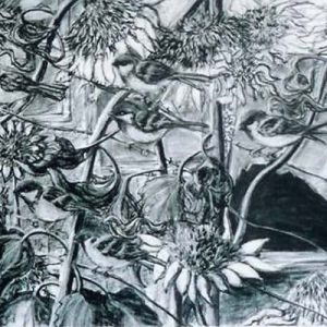 Sparrows - charcoal on paper; 20 x 26 inches; ©2005 - SOLD