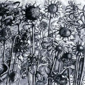 Sunflower Field - charcoal on paper; 30 x040 inches - SOLD