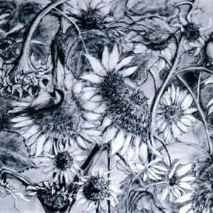 Sunflowers & Chickadees - charcoal & conte on paper; 21-3/4 x 30-1/4 inches; ©2004