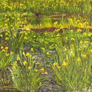 Yellow Lily Pond; oil on canvas; 24 x 24 inches; ©1999 - SOLD